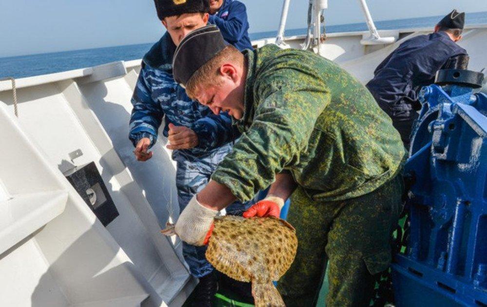Процесс над тремя браконьерами из Новороссийска закончился приговором с осуждением на 2 года.
